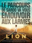 lion_aff